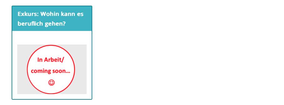 Screenshot des Exkurses im Flugzeug Rätsel